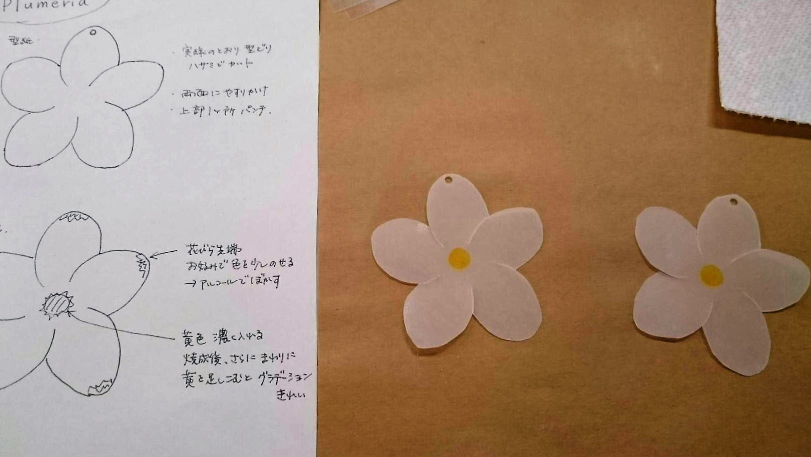 ohshima1-01
